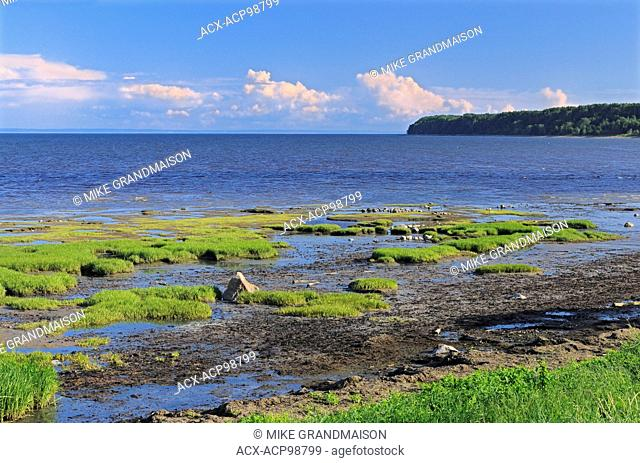Shoreline along the Gulf of St. Lawrence Longue-Rive Quebec Canada