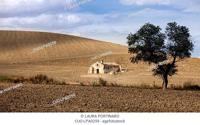Typical countryside in Lucania,Basilicata, South Italy, Italy, Europe