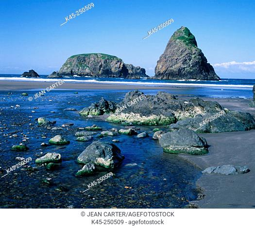 Whalehead Cove at low tide, Samuel H. Boardman State Park. Oregon. USA