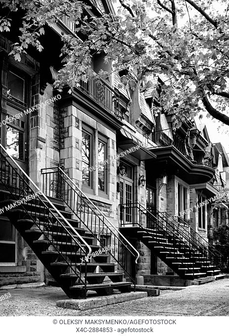 Row of historic townhouses, French style architecture houses, on Avenue Laval in Montreal, Quebec, Canada. L'avenue Laval, Ville de Montréal, Québec, Canada