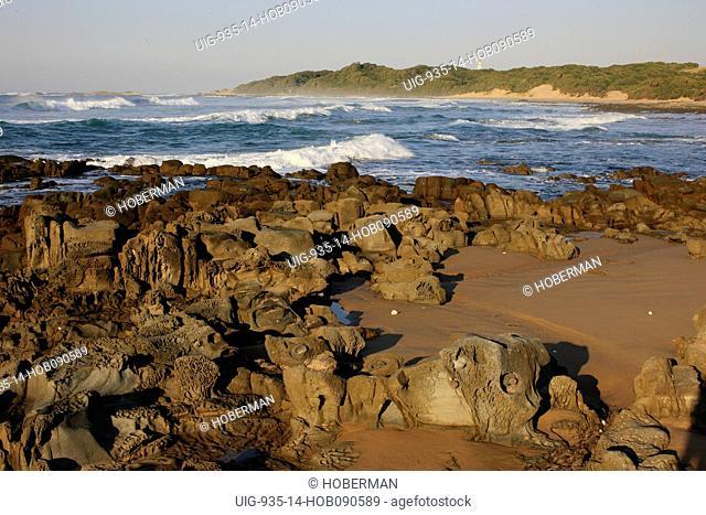 Rocks with Fossils, Wild Coast