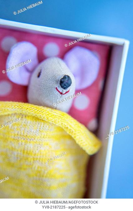 Tiny mouse sleeping inside a box