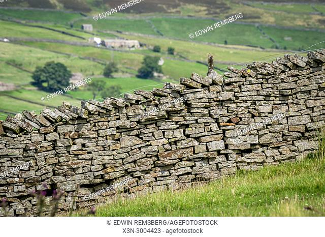 Hand built stone wall sits along hilly landscape, Yorkshire Dales, UK