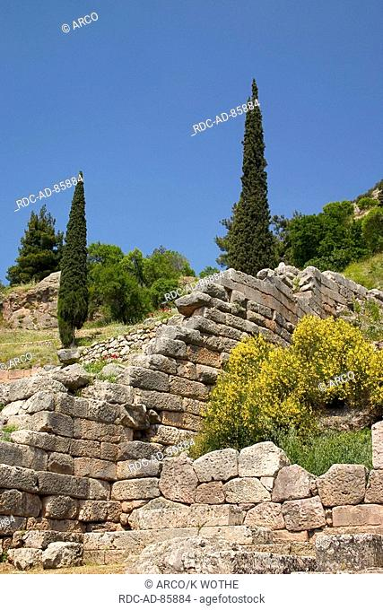 Stone wall and Cypresses Delphi Greece