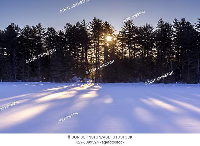 Sunlight and shadows on Frozen Mew Lake in winter, Algonquin Provincial Park, Ontario, Canada