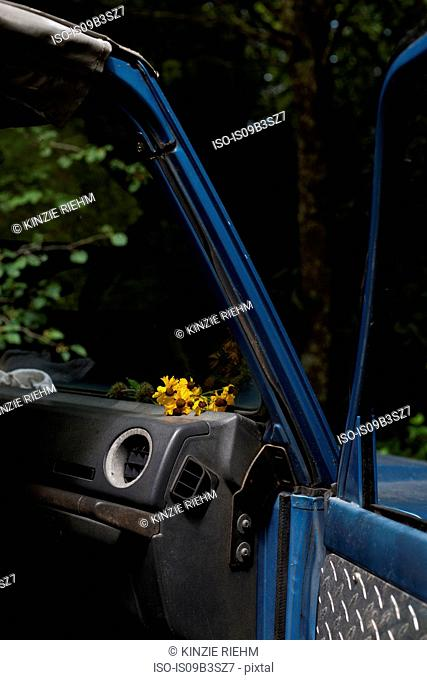 Open car door, yellow flowers on car dashboard