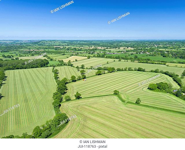 Aerial view of summer grass silage fields, farmland and country landscape