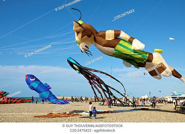 Flying Kites in the sky, autumn festival, beach, Dieppe, 76, Normandy, France