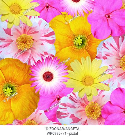 mix of flowers