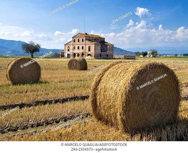 Hay bales after rice harvest. Ebro River Delta Natural Park, Tarragona province, Catalonia, Spain