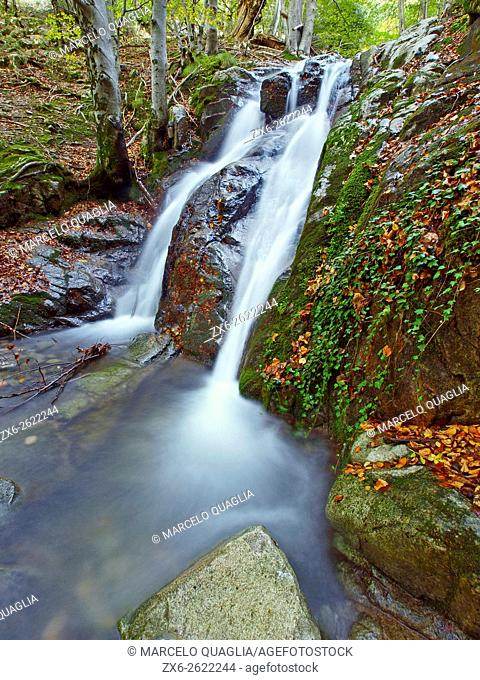 Erola stream at Viladrau village countryside. Beech forest in autumn. Montseny Natural Park. Barcelona province, Catalonia, Spain
