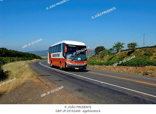 Bus traffic and coffee plantation on the banks of the BR-491 highway in the rural area, Itamogi, Minas Gerais, Brazil, 05.2016
