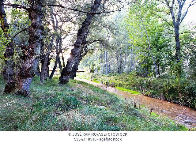 Alhama river in Inestrillas. Logroño. La Rioja. Spain