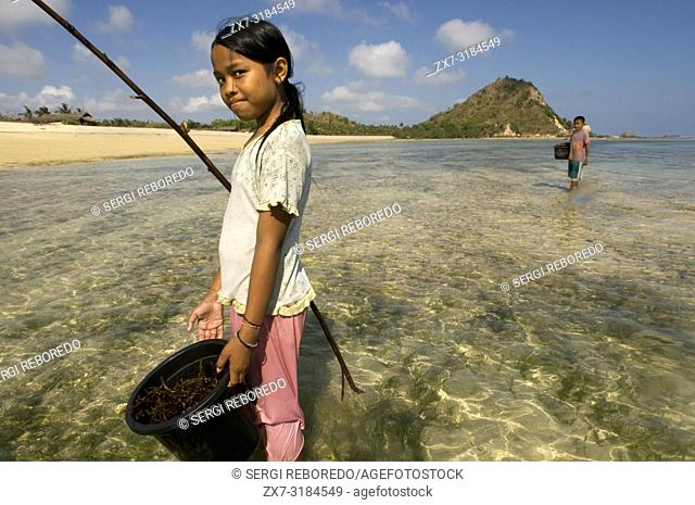 The women and their daughters usually go along the shore of the beach of Kuta, a fishing village south of Lombok, in search of highly prized seaweed for cooking