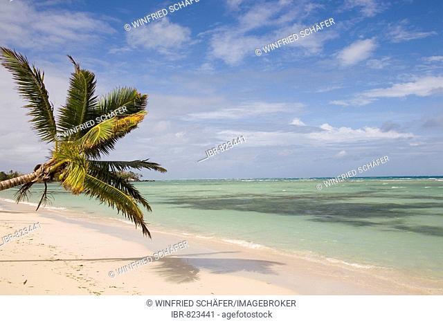 Beach with palm trees, Nosy Nato Island, Madagascar, Africa