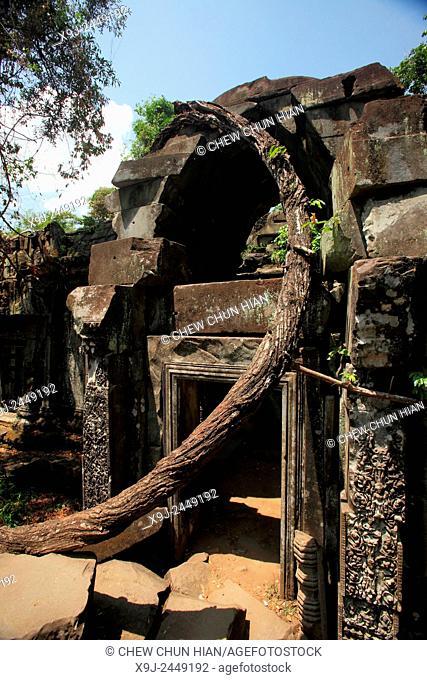 Beng Mealea Temple, UNESCO World Heritage Site, Siem Reap Province, Cambodia