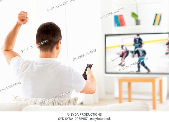 man watching ice hockey game on tv at home