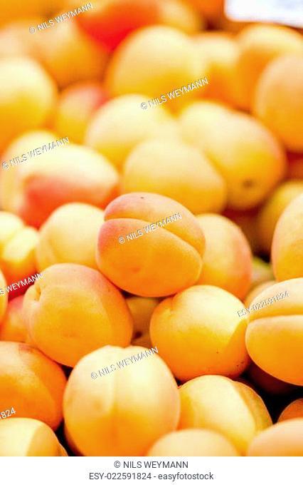 frische gesunde pfirsiche aprikosen auf dem markt