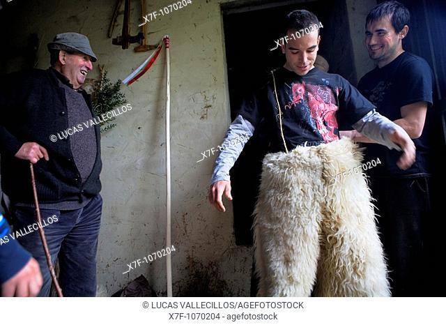 `La Vijanera'carnival,bear, preparing the carnival, Silio, Molledo  Cantabria, Spain