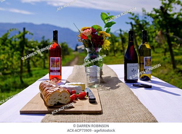 Dining in the vineyard, Little Straw Vineyards, West Kelowna, British Columbia, Canada