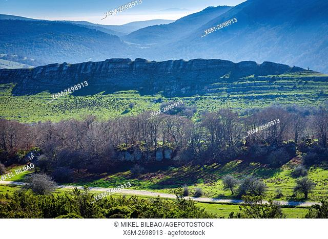 Mountain meadow and forest. Urbasa-Andia Natural Park. Navarre, Spain, Europe