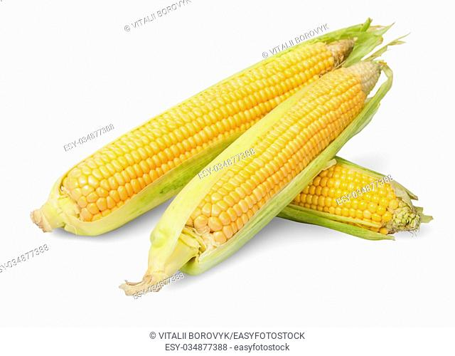 Three partially peeled corn cob lying cross isolated on white background