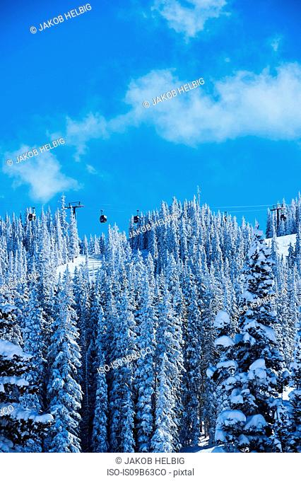 Cable car over forested snow covered mountains, Aspen, Colorado, USA