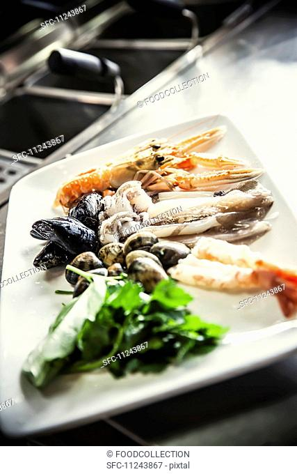 A still life featuring crustaceans, mussels and squid