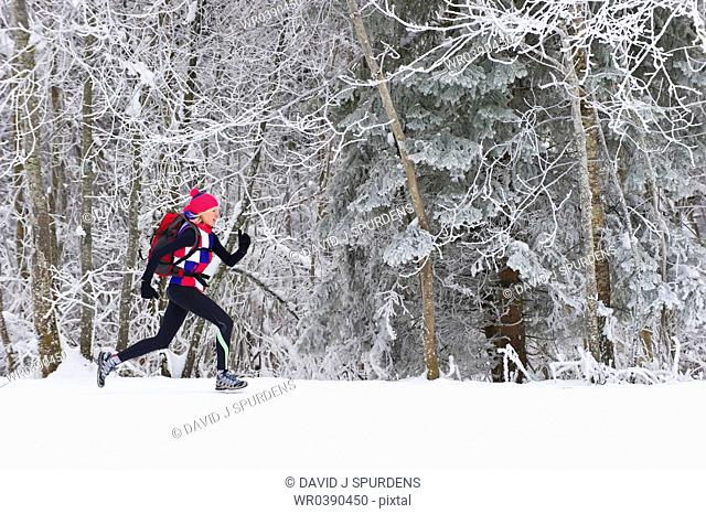 Running through a snowy winter forest