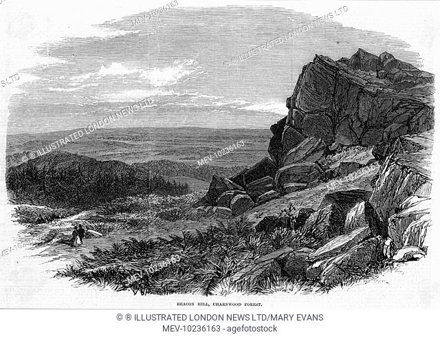 Beacon Hill, in Charnwood Forest, Leicestershire