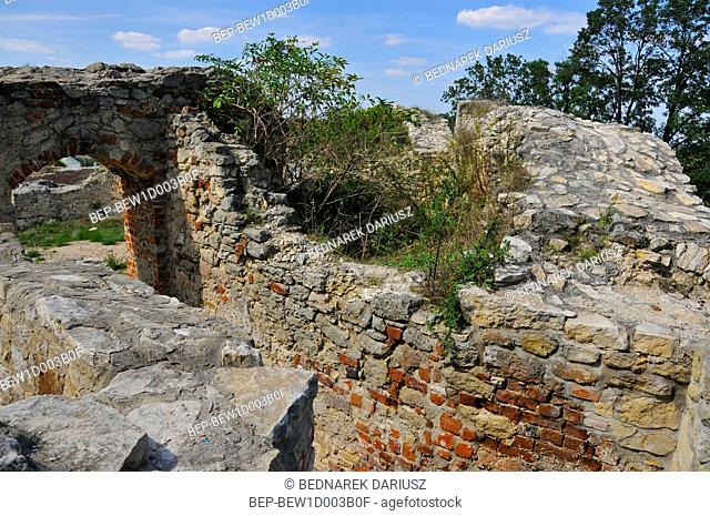 Ruins of the Gothic-Renaissance Castle of the Bishops of Cracow built in the years 1326-1347. Ilza, Masovian Voivodeship, Poland