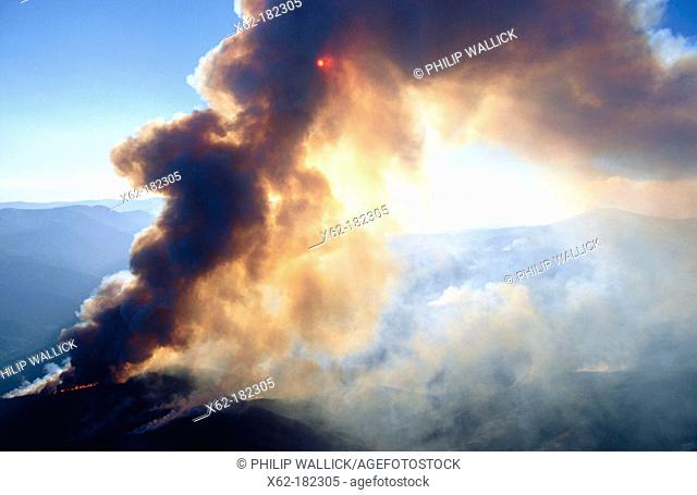 Forest Fire at Clear Lake area. California, USA