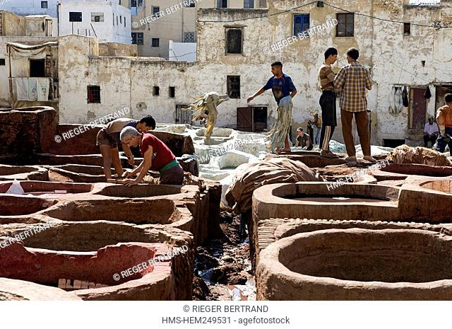 Morocco, Middle Atlas, Fez, Imperial City, Fez El Bali, medina listed as World Heritage by UNESCO, Chouara, the tanners district