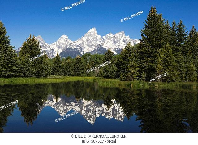 Tetons reflecting in pond, Schwabacher Landing, Grand Teton National Park, Wyoming, USA