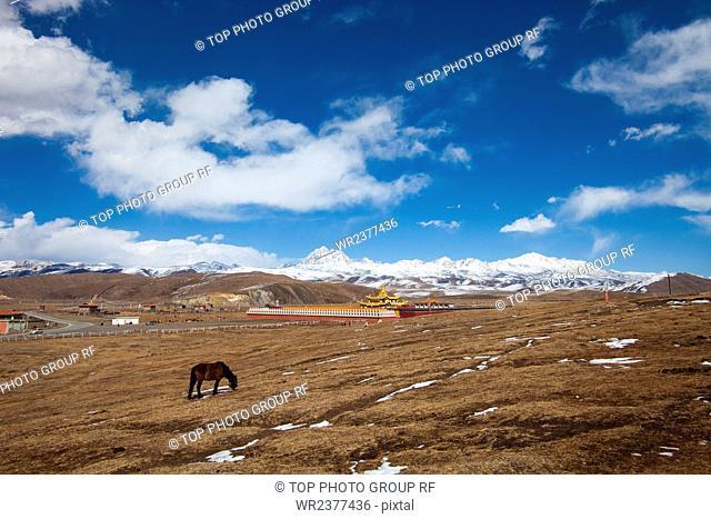 Sichuan province Kamiyama Yala