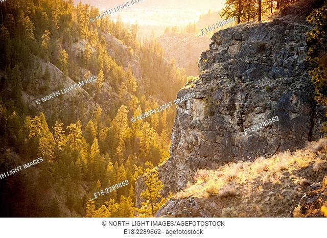 Canada, BC, Okanagan Falls. Cliffs, ravines, forest and dry grass in Forest Service area above Okanagan Falls