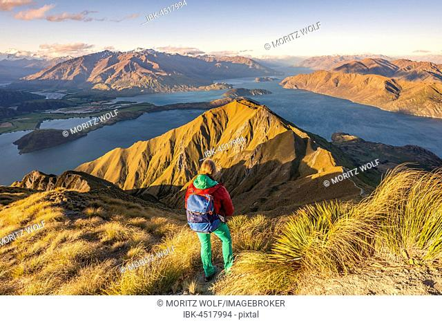 Hiker on path to peak of Roys Peak, evening light, view of mountains and lake, Lake Wanaka, Southern Alps, Otago Region, Southland, New Zealand