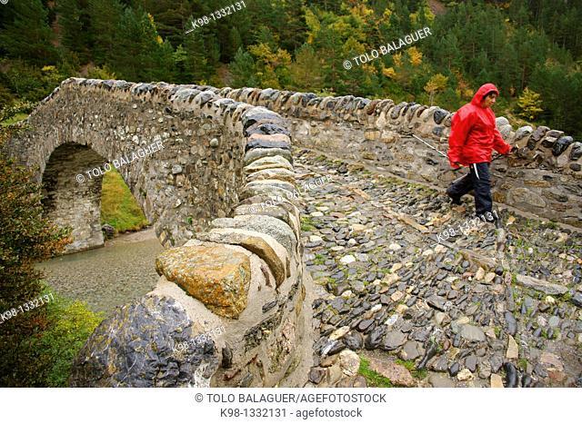 Roman bridge near San Nicolas de Bujaruelo Valley Bujaruelo Huesca Pyrenees Spain
