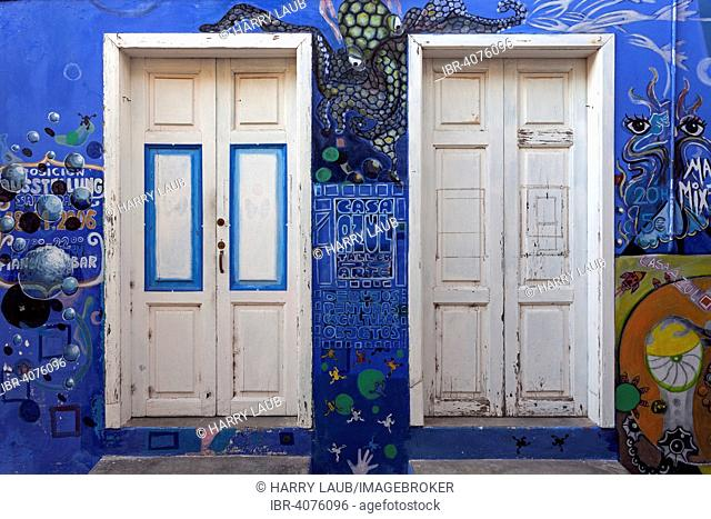 Brightly painted house wall with two doors, La Calera, Valle Gran Rey, La Gomera, Canary Islands, Spain
