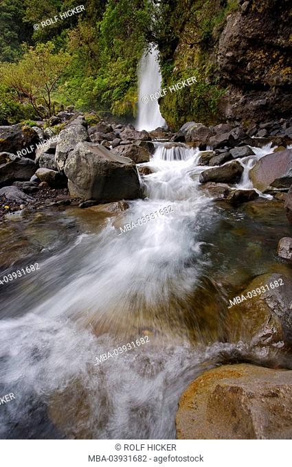 New Zealand, north-island, Taranaki, Mt Egmont national park, Kapuni Loop, Track of Dawson case, waterfall, river cape-university, national-park, reservation