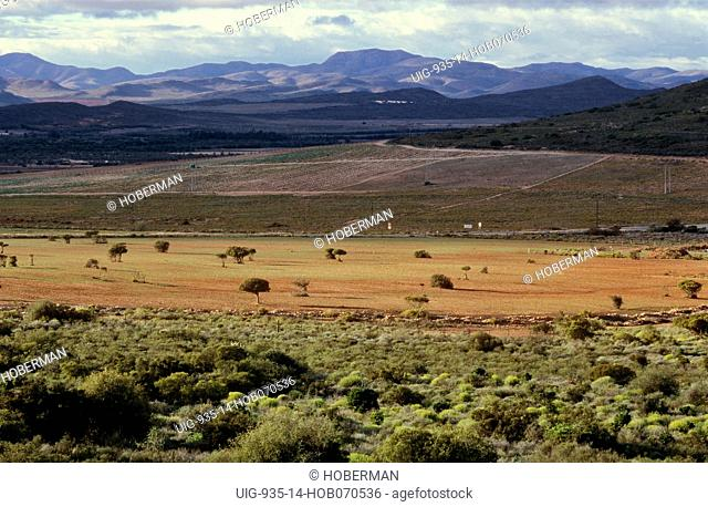Route 62, Western Cape