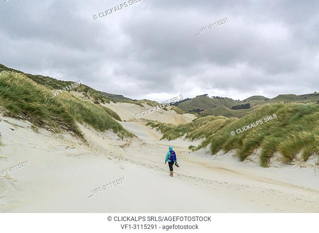 Woman walking towards Sandfly Bay on a cloudy summer day. Dunedin district, Otago region, South Island, New Zealand