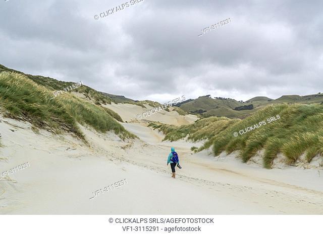 Woman walking towards Sandfly Bay on a cloudy summer day. Dunedin district, Otago region, South Island, New Zealand