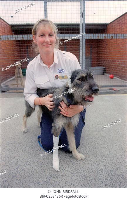 RSPCA worker nursing injured dog