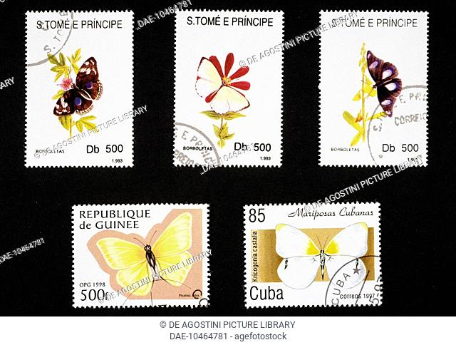 Postage stamps honouring butterflies: top, postage stamps depicting Longwing butterfly (Heliconius sp), Pieris sp and Ninphalis sp, 1993