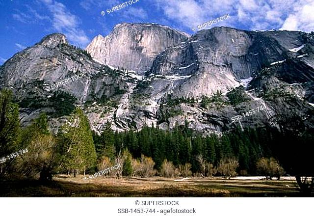 Trees in front of mountains, Half Dome, Yosemite National Park, California, USA