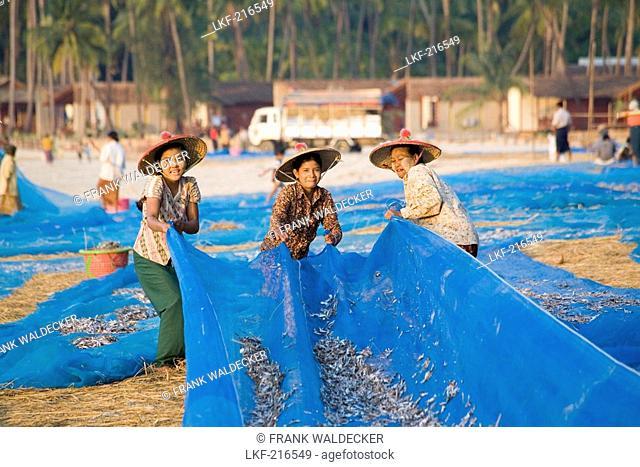 Women drying fish in a fishing village near Ngapali Beach, Gulf of Bengal, Rakhine State, Myanmar, Burma