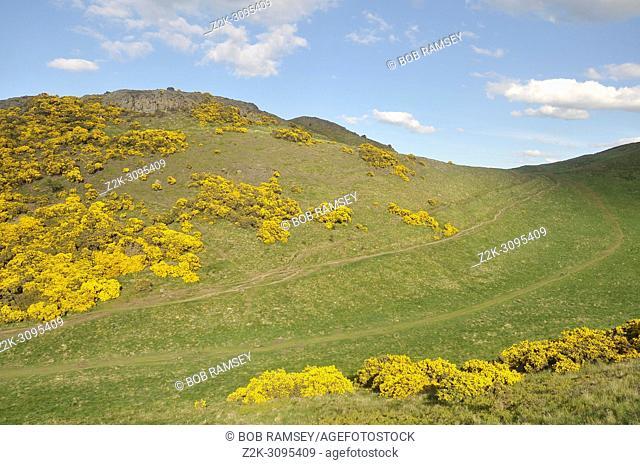 Natural landscape near the city of Edinburg, Holyrood park, Edinburg, Scotland