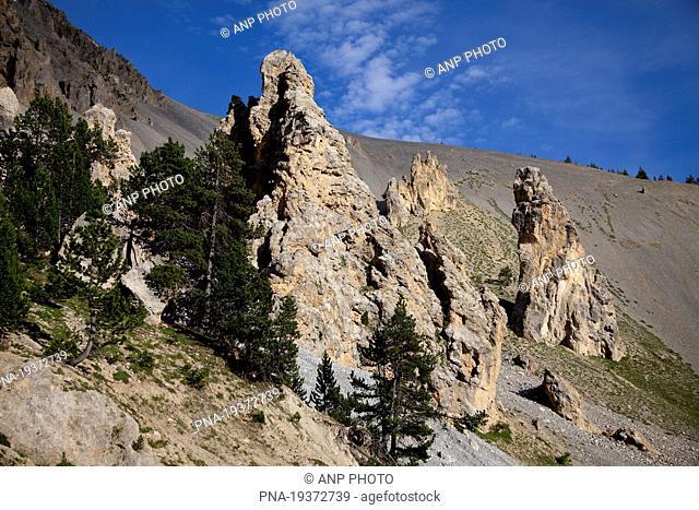 Col DıIzoard, Guillestre, Alps, Hautes-Alpes, Provence-Alpes-CÖte dıAzur, France, Europe