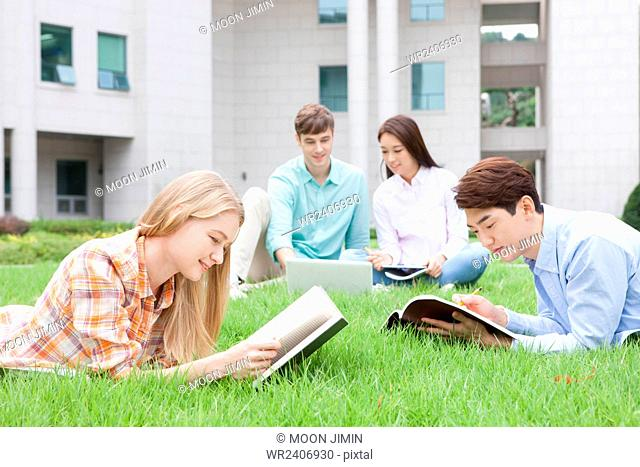 International students and domestic students in college studying together sitting and lying on a grass on campus